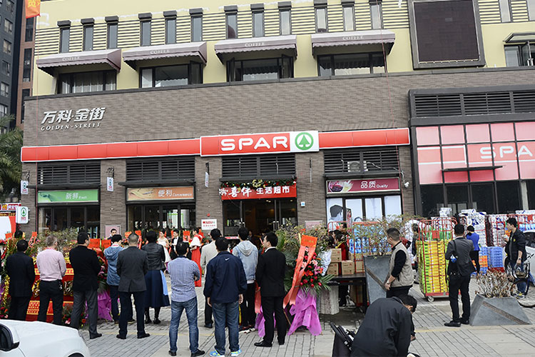 Formulation of strategy for spar zambia